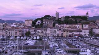 Cannes Port Live Stream